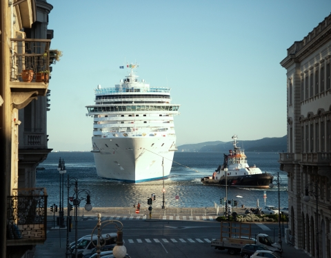 Cruise ships arrives in port
