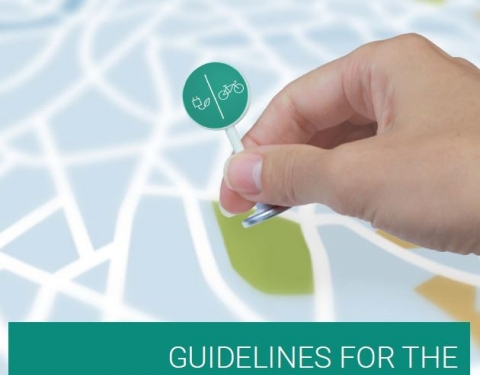 SIMPLA guidelines cover page