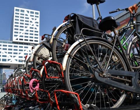 Utrecht central station - bikes
