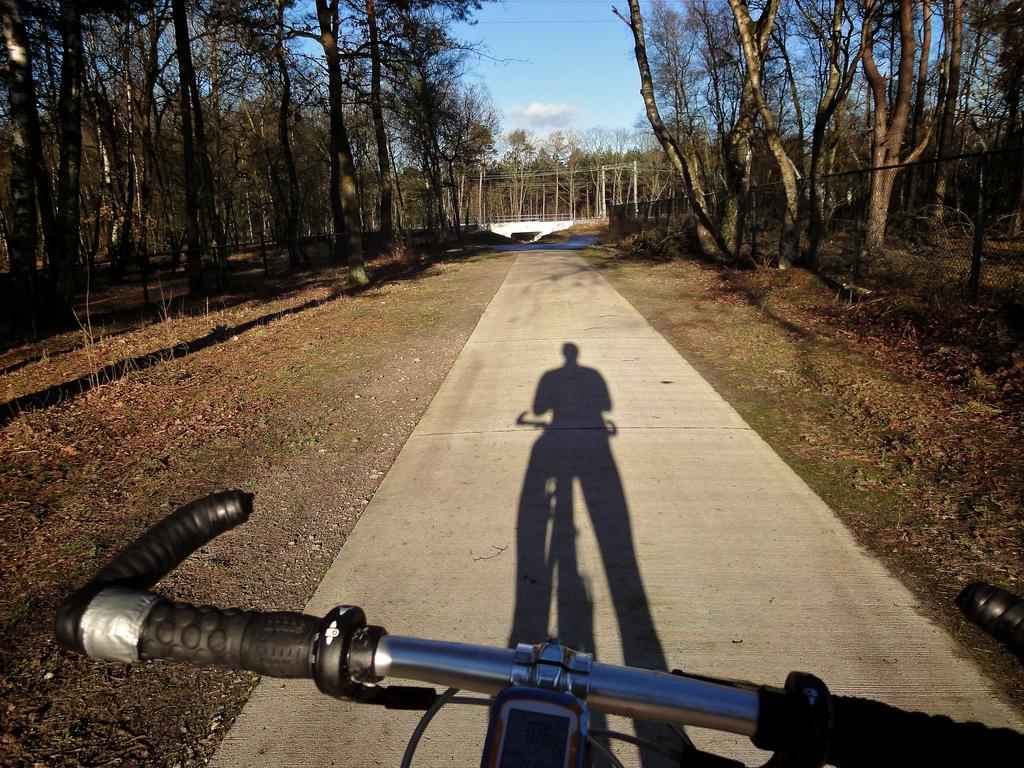 Dutch Cyclepath